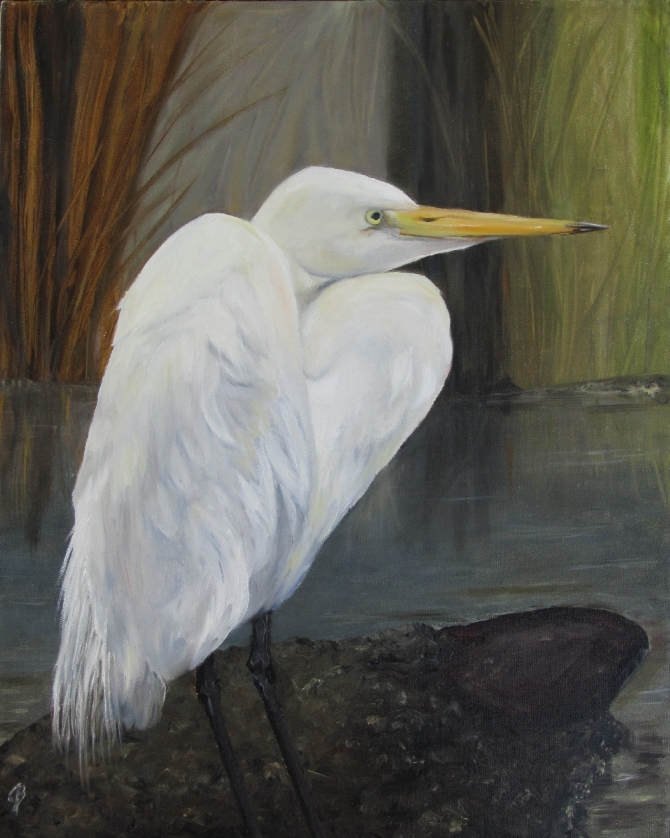 Great White Egret 16x24 inch oil on canvas painting by Joyce Brandon