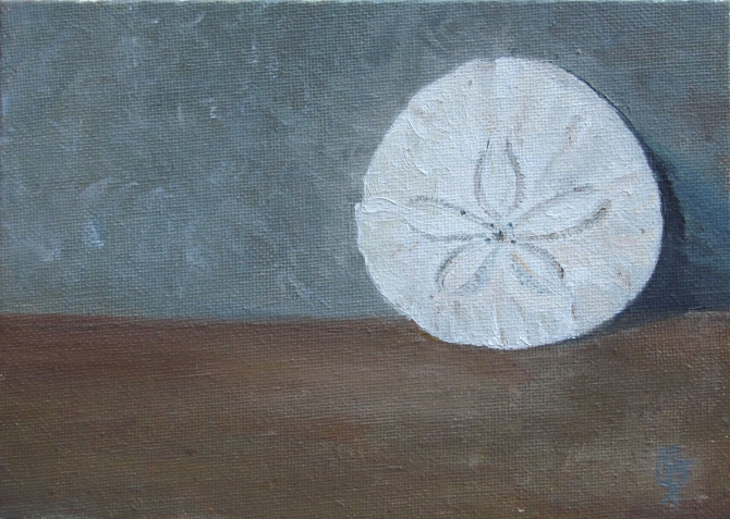 Sand Dollar - 4x6 still life, oil on canvas board, painting by Joyce Brandon.  A sand dollar collected on a trip to the coast when I was a child.