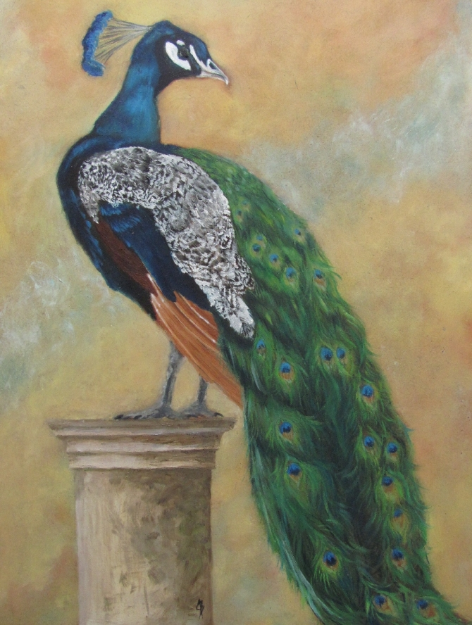 A peacock in oils on wood panel.  By joyce brandon. 2011