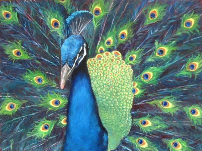 The Strutting Peacock - 9x12 inch Oil painting on artist's board masonite by  Joyce Brandon