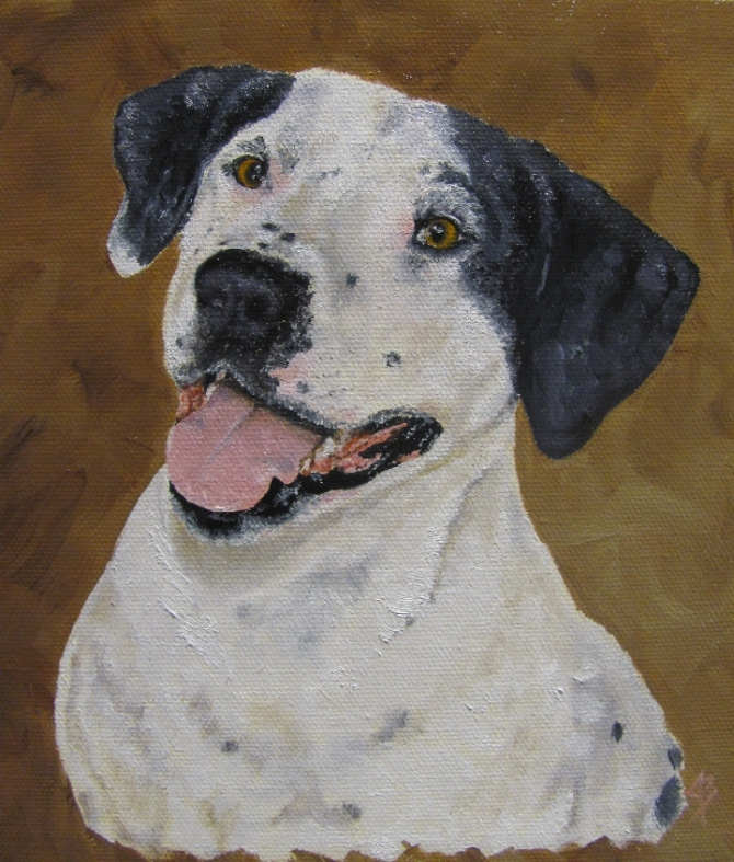 Canine oil painting by Joyce Brandon