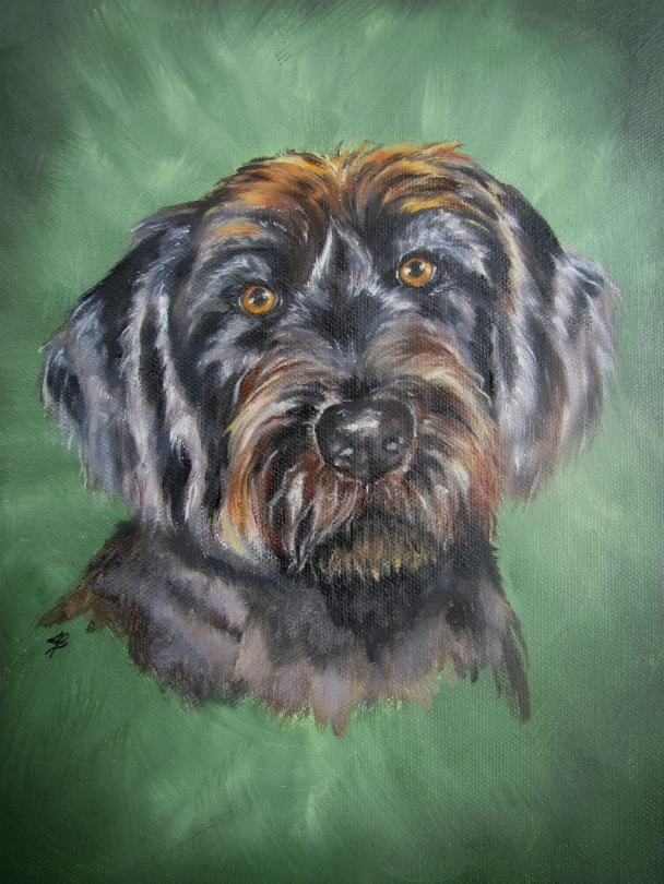 A pet portrait of a labradoodle in oil paint on stretched canvas