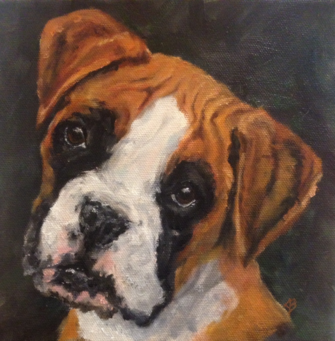 Art. Portrait of a Boxer puppy. 8x8 inch oil painting on stretched canvas. currently for sale