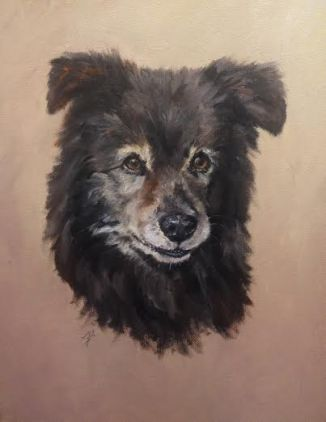 pet portrait of a shepherd mix dog on stretched canvas