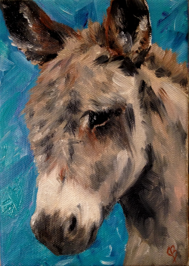 Donkey burrow portrait in oils on canvas with a turquoise background